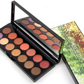Miss rose sombra de ojos profesional paleta de 14 colores shimmer mate paleta de sombra de ojos ahumada maquillage ms034