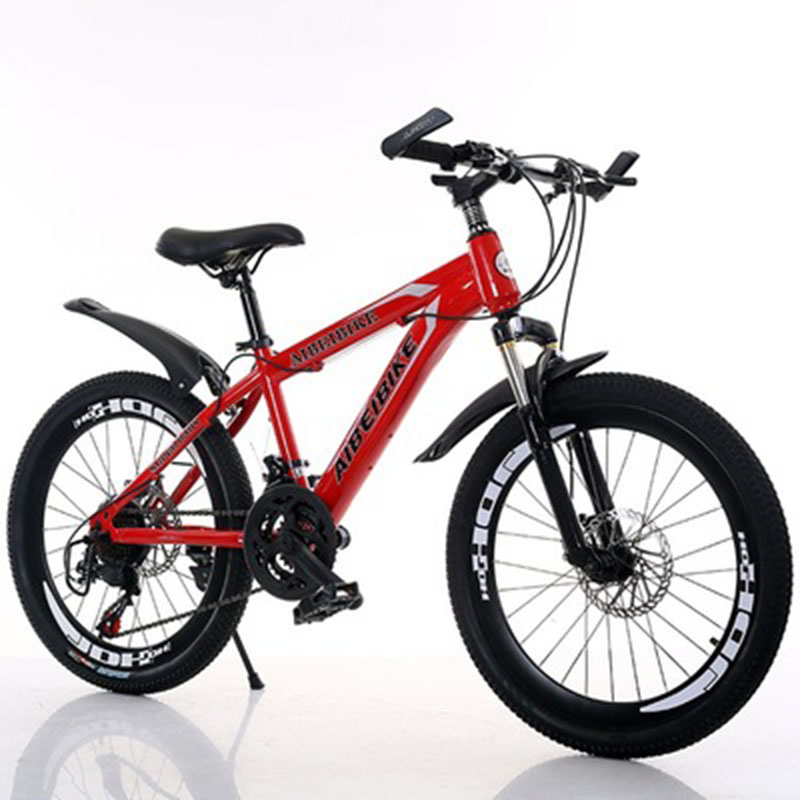 Student Adult Bicycle 24-Speed Two-Disc Brake Shock Absorber 24-Inch Mountain Bike