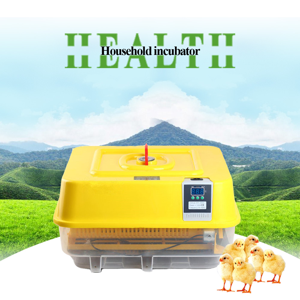Hot Sale Mini Industrial Brooder Hatchery Machine Fully Automatic Egg Incubator For Hatching 42 Chicken Duck Poultry Eggs