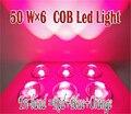 LED Grow Light 300W Красный Синий Оранжевый освещение для комнатных растений Гидропоника Veg цветение