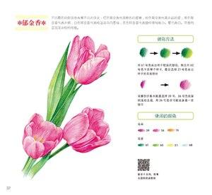 Image 3 - Usado cor chinesa lápis desenho natureza planta flor suculentas arte pintura livro