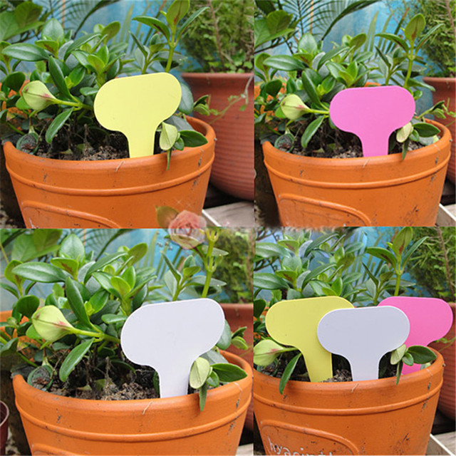 50Pcs/Lot Plastic Plant Labels T-type Garden Tags Pots Planters Nursery Plant Labels Garden Decoration Tools