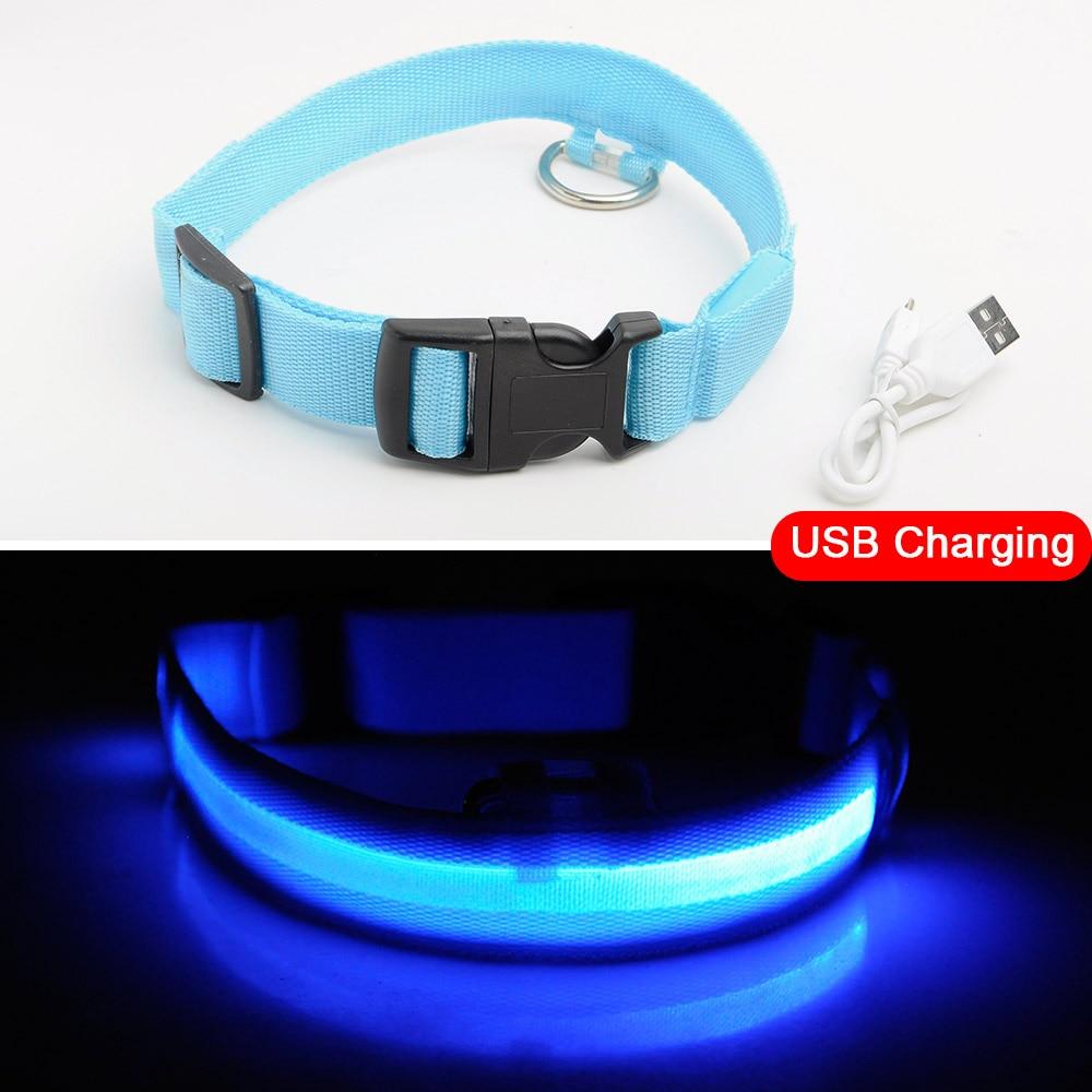 Blue USB Charging