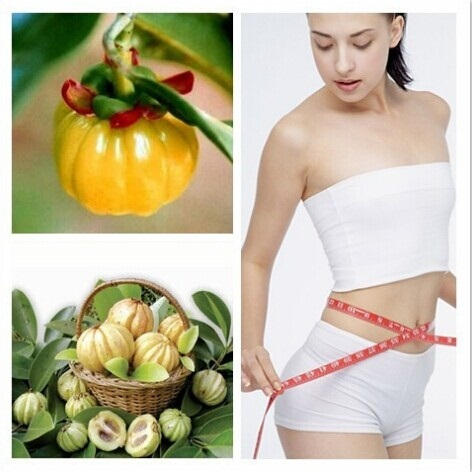 Best Quality  1KG pure Garcinia cambogia extract powder HCA 60% Free Shipping