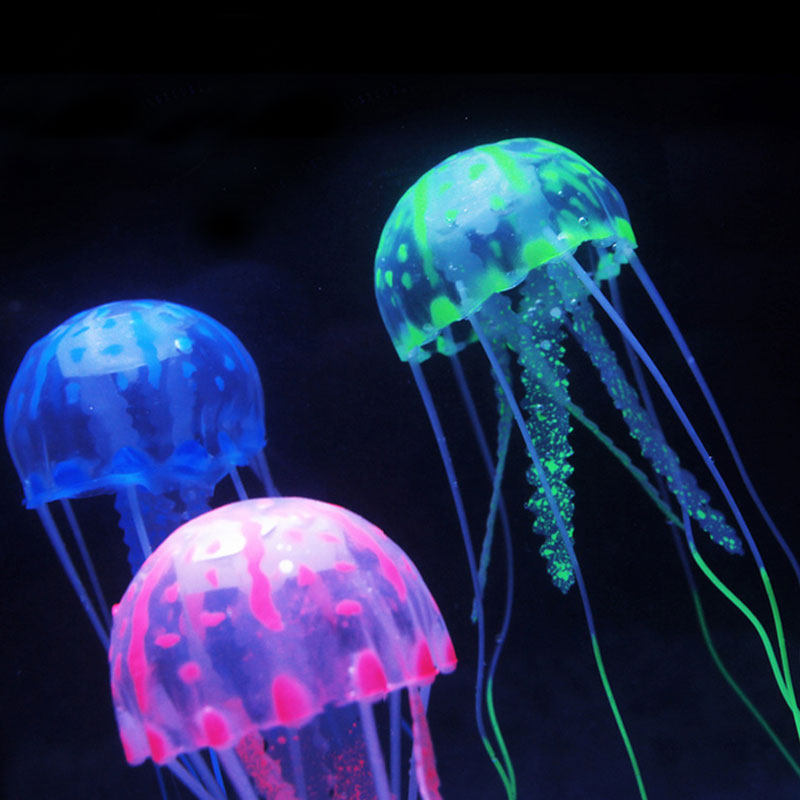 Jellyfish pets reviews online shopping jellyfish pets for Jelly fish pet