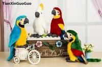 high quality goods about 26cm cartoon beautiful bird parrot plush toy soft doll birthday gift b2727
