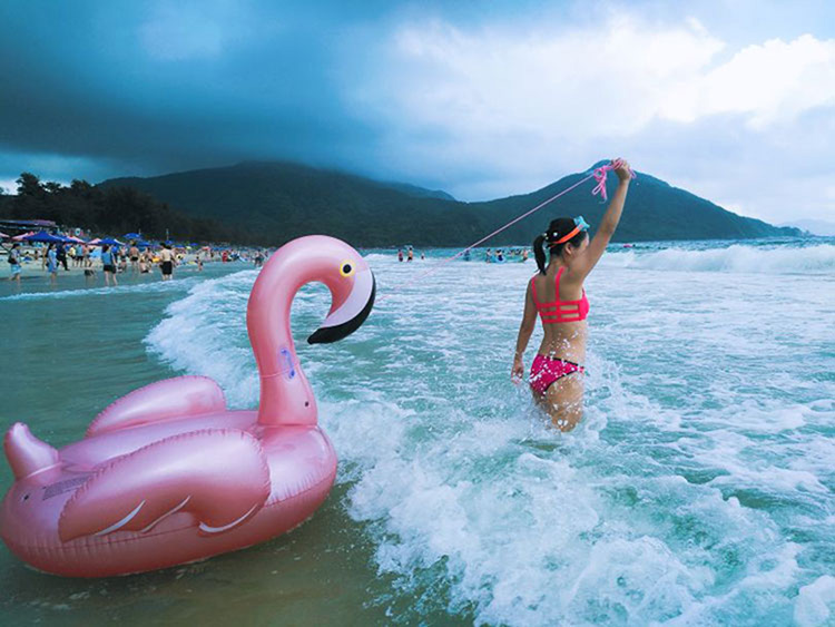 flamingo swim