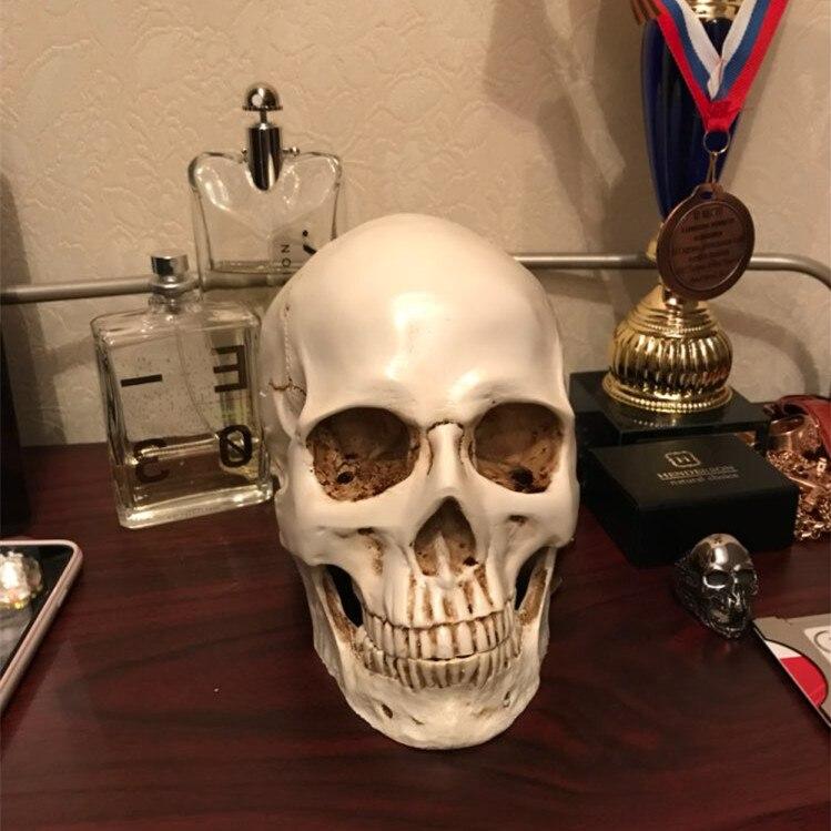 Menschlichen Kopf Harz Replik Medizinische Modell Lifesize 1:1 Halloween Dekoration Hohe Qualität Dekorative Handwerk Schädel