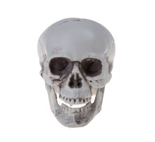 Mini Plastic Skull Decor Prop Skeleton Head Halloween Coffee Bars Ornament