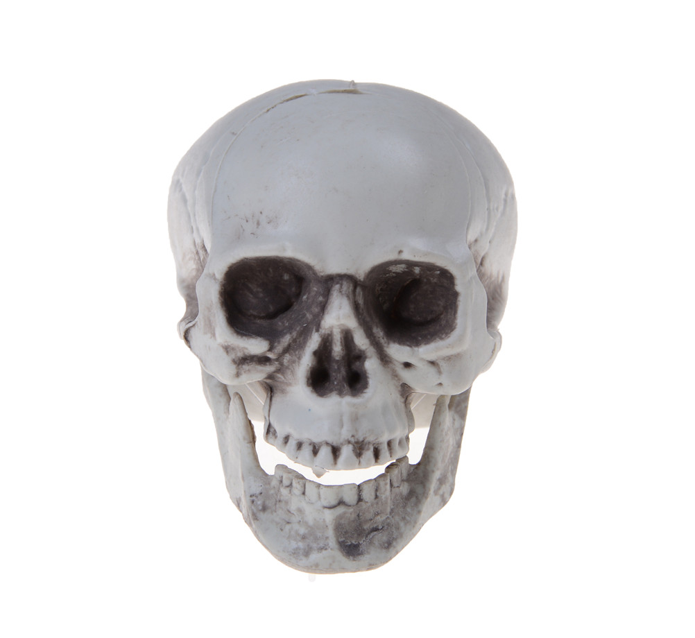 Online Get Cheap Skull Ornaments -Aliexpress.com | Alibaba Group