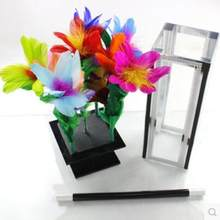 Crystal Botania Clarity Box to Flower Magic Tricks Amazing Stage Magic Appearing Flower Bush Illusion Mentalism For Magicians(China)