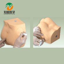 BIX-H1T Buttocks  Injection Practice Model   W123
