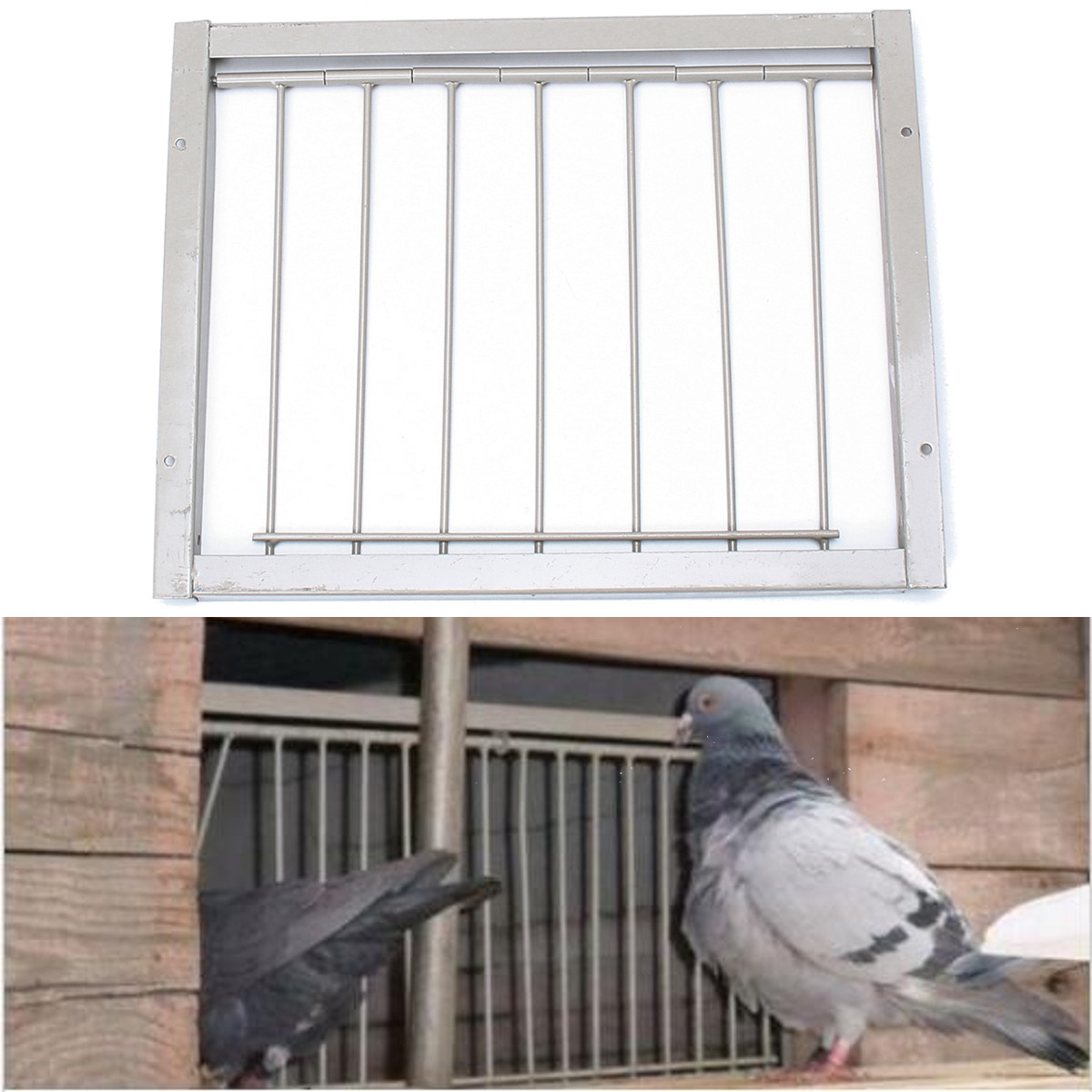Popular Pigeon Loft-Buy Cheap Pigeon Loft lots from China ...
