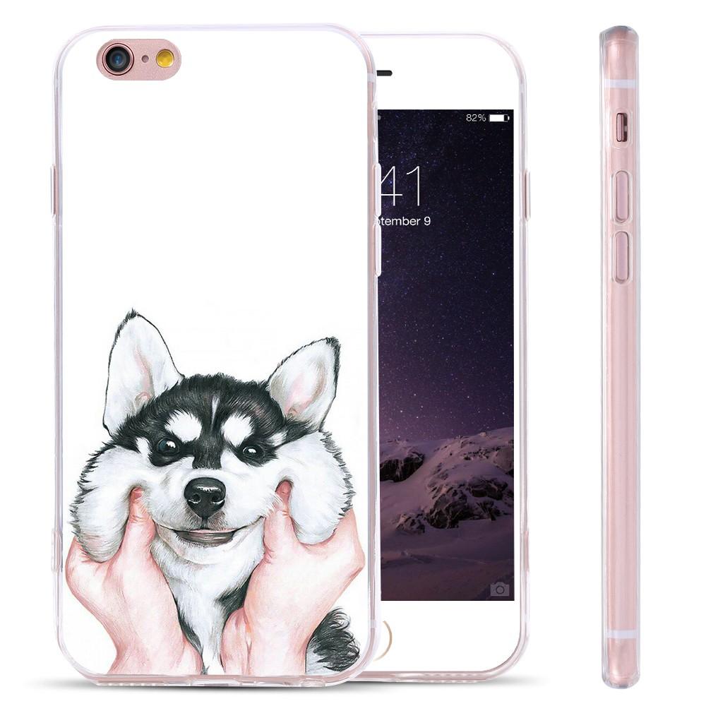dog case  (6)