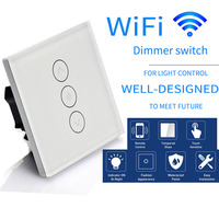 Voice Control EU Standard WiFi Touch Dimmer Switch Smartphone APP Remote Control Work With Alexa And