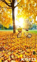 5ft*7ft For Children Kids Baby Photograph Studio Art Photos Background Backdrops Golden Autumn Leaves Stand Bicycle Sunflowers