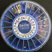 Matériaux dentaires root canal de réparation En Acier Inoxydable racine canal ongles racine canal pile axe fixe 120 pcs