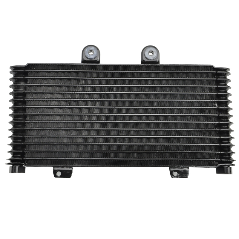 LOPOR мотоцикла замена маслянного охладителя радиатора подходят GSF1200 бандит 2001 2002 2003 2004 2005 ГСФ 1200 01-05 bandit1200 новый
