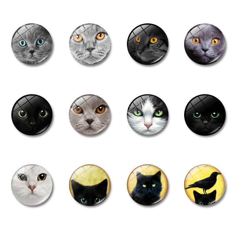 Steampunk Cat 30MM Fridge Magnet Steampunk Retro Gift Anime Pet Glass Dome Note Holder Magnetic Refrigerator Stickers Home Decor