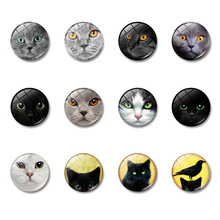 Steampunk Cat 30MM Fridge Magnet Retro Gift Anime Pet Glass Dome Note Holder Magnetic Refrigerator Stickers Home Decor