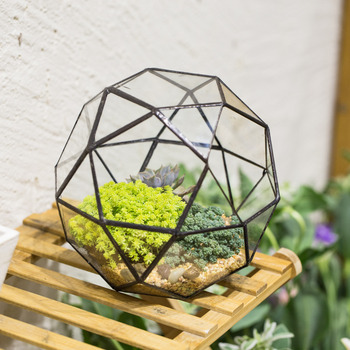 Creative Modern Artistic Planter Glass Geometric Terrarium Succulents Fern Moss Planter Bonsai Plant Pot Flower Pot Decorative