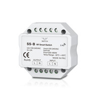 AC Triac RF Smart Switch With Relay Output Dimmer Switch AC Triac Wifi Light Mini Amplifier