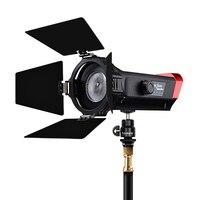 Aputure LS мини 20d Френеля студийный свет TLCI 97 + Температура 7500 К 300 К легкий регулировка угла фотографии освещение Youtube