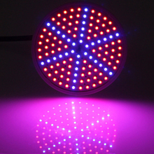 BEST New 15W Red+Blue LED Plant Grow Light Lamps E27 AC85~265V LED Hydroponics Lamps Free Shipping