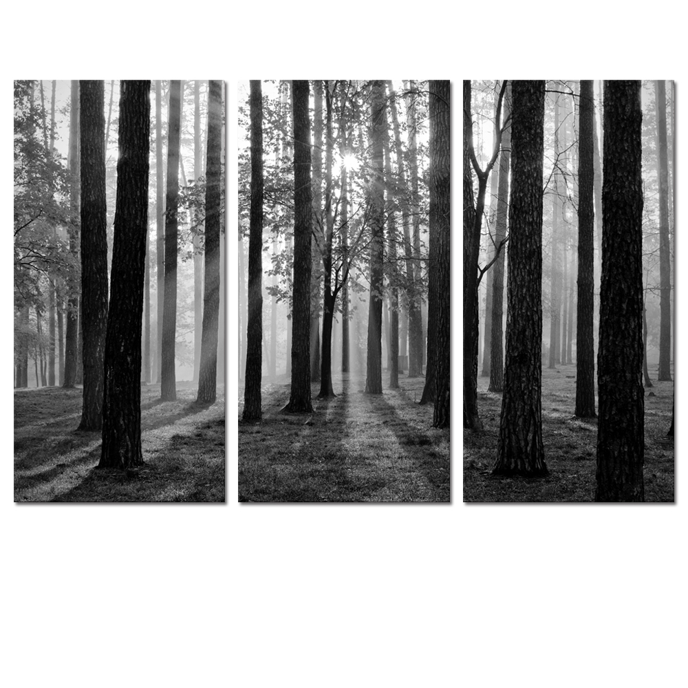 Black and white photo canvas prints home wall decor for Black and white mural prints