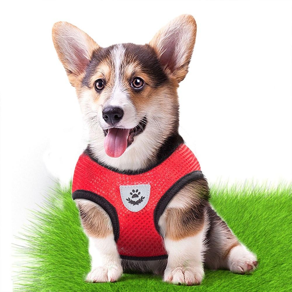 Дышащие поводок маленькая шлейка для собаки домашнего животного и поводок для собак щенков кошек жилетка-поводок ошейник для собак, поводок для маленьких собак из сетчатой ткани в виде мопса, бульдог