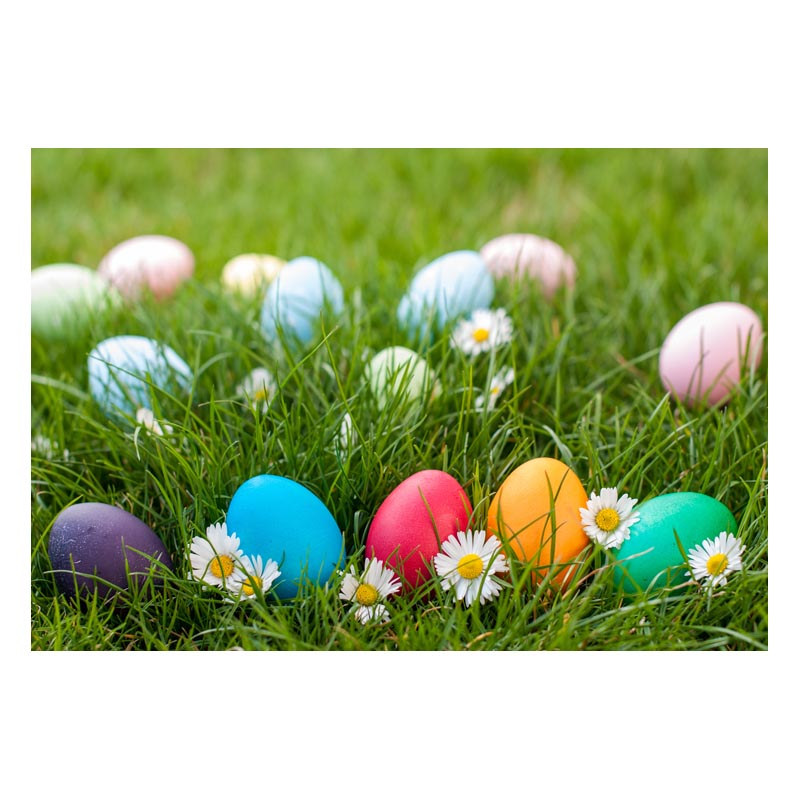 2.2MX1.5M thin vinyl Photography Backdrop Custom Photo Prop easter backgrounds GE-167