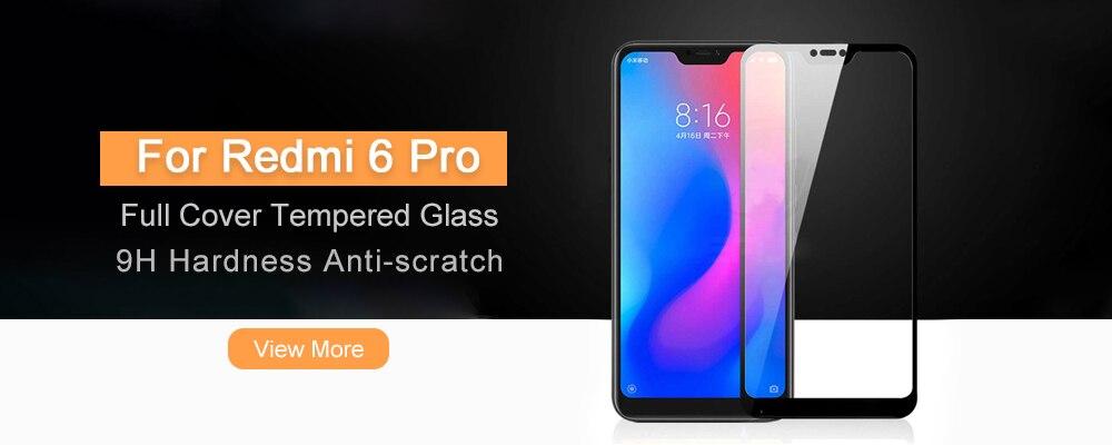 6 Pro