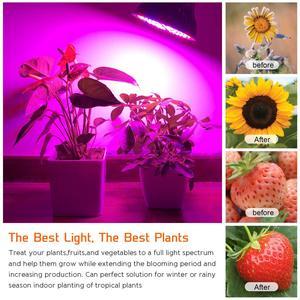 Image 5 - Ampul büyümeye yol açtı 50W kapalı bitkiler ampuller tam spektrum lamba sebze çiçekler hidroponik seralar için bahçe
