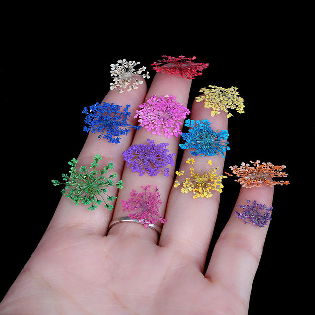 Online shop 12 colors real nail dried flower nail art stickers 12 colors real nail dried flower nail art stickers tips decoration with case small flowers fashion nail styling tools diy prinsesfo Choice Image