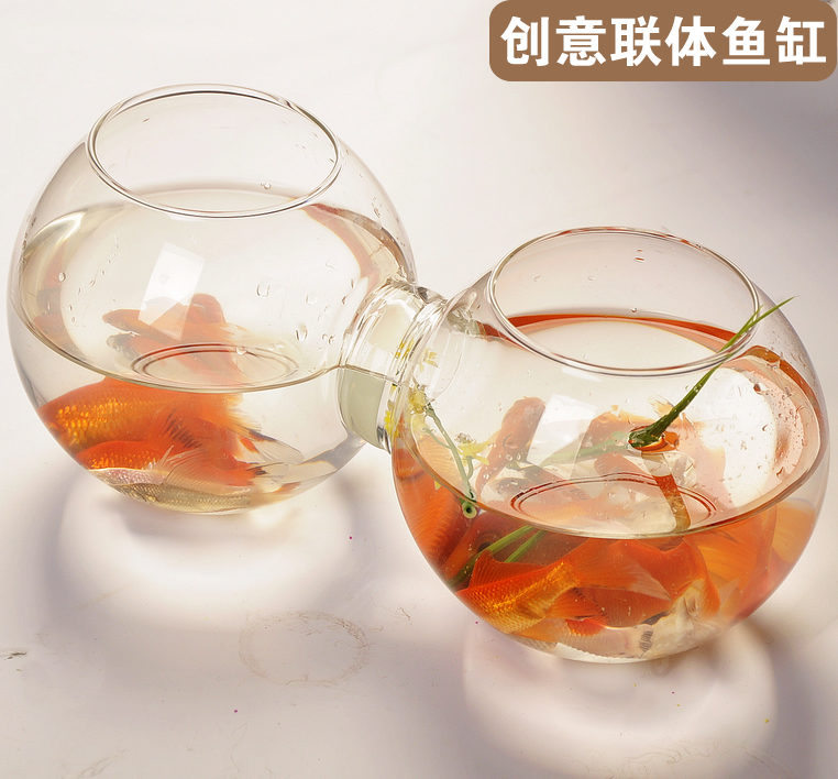 Good Luck Fashion Hand In Hand Siamese Style Glass Fishbowl Lucky