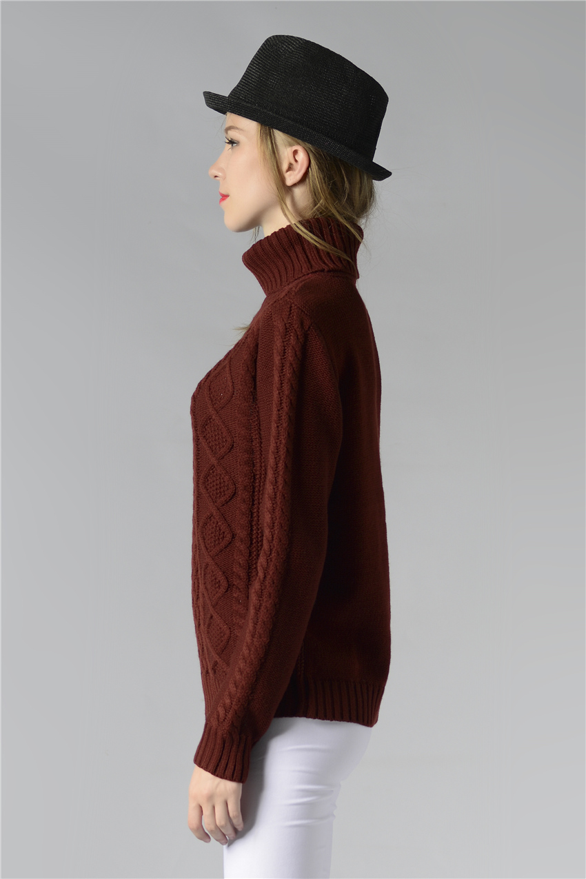 HTB1x3DNSpXXXXb9aFXXq6xXFXXXs - FREE SHIPPING ! Sweater Long Sleeve Turtleneck JKP196