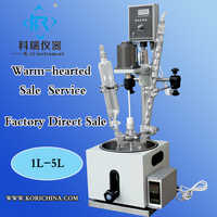 Small Fashionable 1 liter process reactor Heating mantle glass Chemical Lab reactor