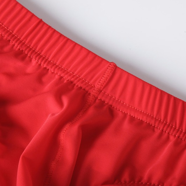 Sexy Men's Brief Breathable Ultra Thin Smooth