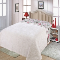 High grade autumn and winter Fale quilted crystal velvet double sided cotton bed cover winter cotton thickening 220 * 240 bed bl