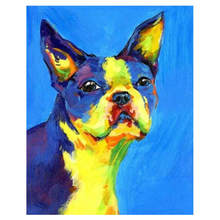 Digital Oil Painting Coloring By Numbers,DIY Hobby At Home,Painting Numbers Colorful Dog