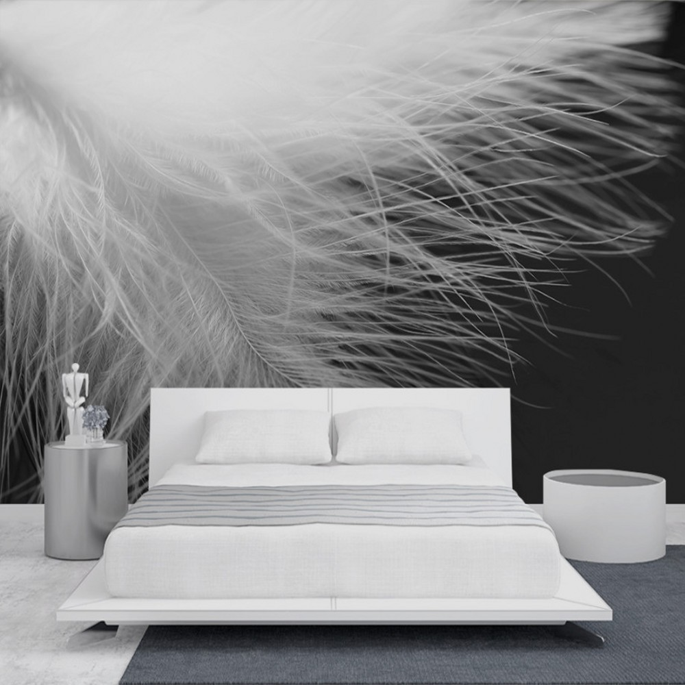 Free Shipping Modern Simple Black White Feathers Wall Background