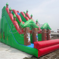 Inflatable Water Slide,Giant Outdoor Inflatable Slide,Commercial Water Slide For Kids