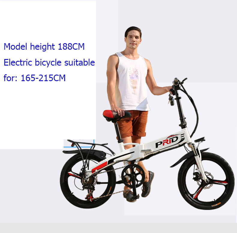 Electric Bike 20inch Aluminum Folding Bike 48v12a Lithium Battery Electric Bicycle 350w Powerful Mountain Bike Snow/city E Bike