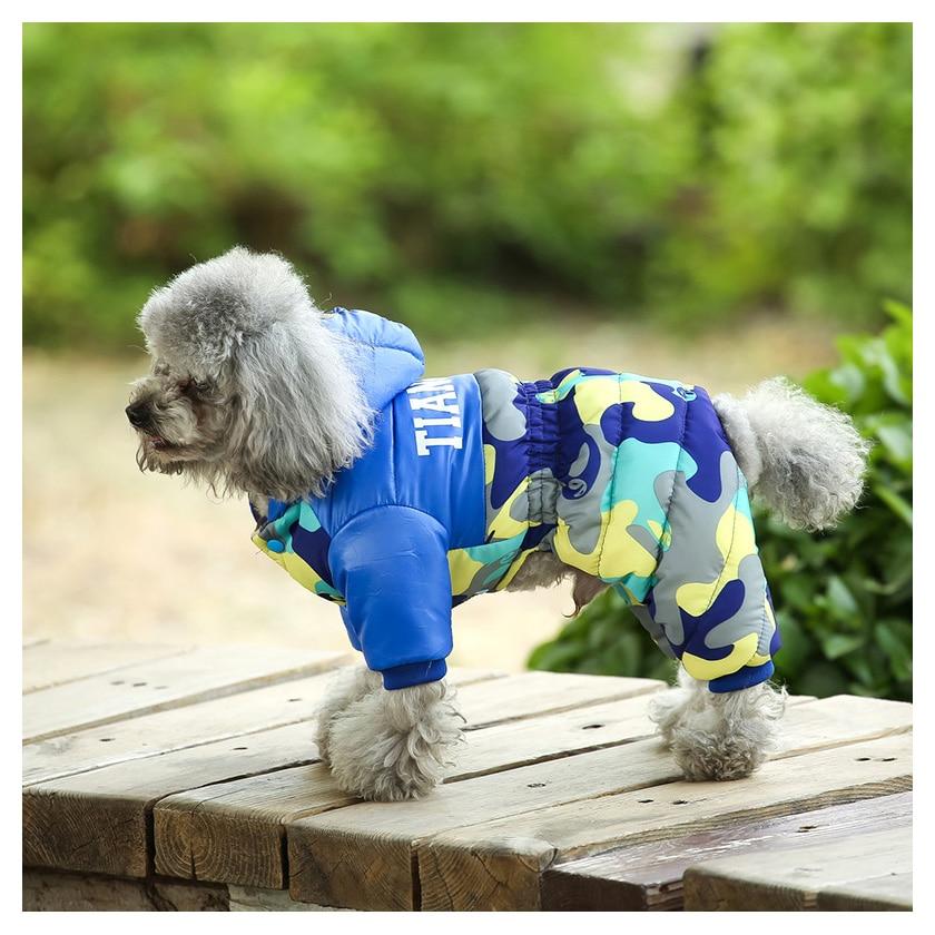 dog clothes 308