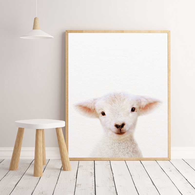 Baby Lamb Print Farm Animal Wall Art Nursery Decor Modern Photography Canvas Painting Picture Kids Room Home