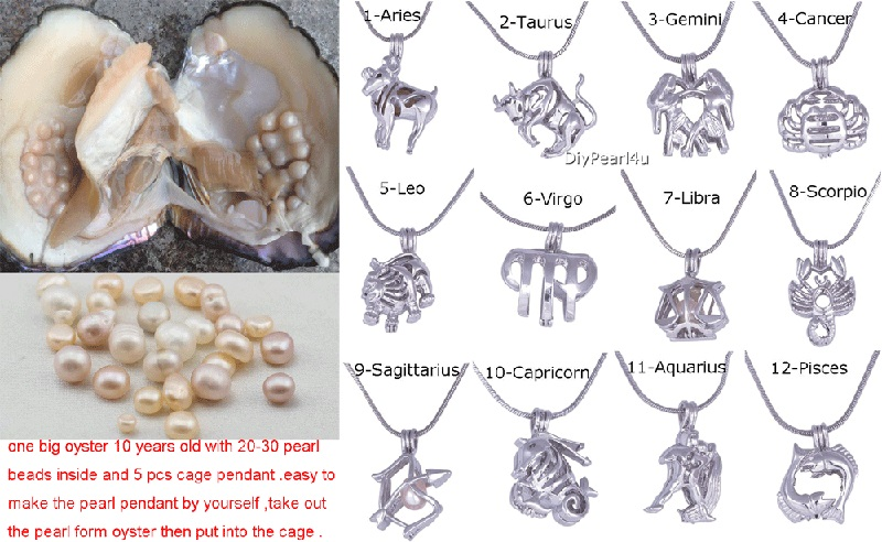 New Live Pearl Party Oyster 9pcs Pearl Cage Necklace Pendant+1pc Huge Pearl Oyster Monster DIY Love Wish Pearl Gift FP208