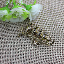 Flowery women selling the new popular jewelry wholesale girl lovely birthday party animal owl brooch brooch free shippingSETS