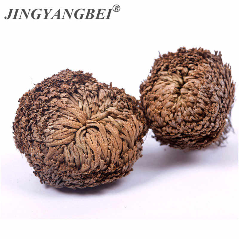 ใหม่ Magic Resurrection Plant Rose of Jericho โรงงานไดโนเสาร์ Air Fern Selaginella Moss