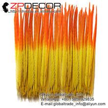 Zpdecor 45 55 см 100 шт/лот окрашенный двухцветный красивый