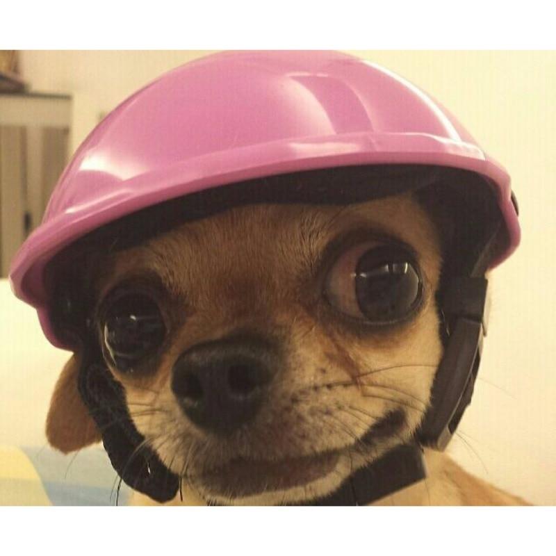 Красивый Байкер Hat домашних животных шлемы для верховой езды Кепки ABS Собачка Щенок Мотоцикл Защита для спорта собака кошка домашние безопа...